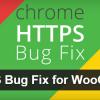 Naprawienie błędu dla WooCommerce w przeglądarce Chrome